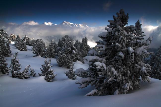 Les Alpes En Blanc