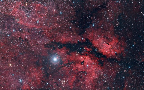 IC1318 - Sadr Region