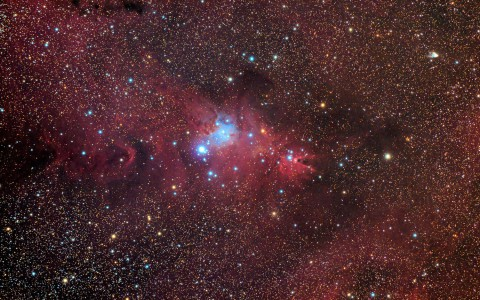 NGC2264 - The Cone and The Christmas Tree