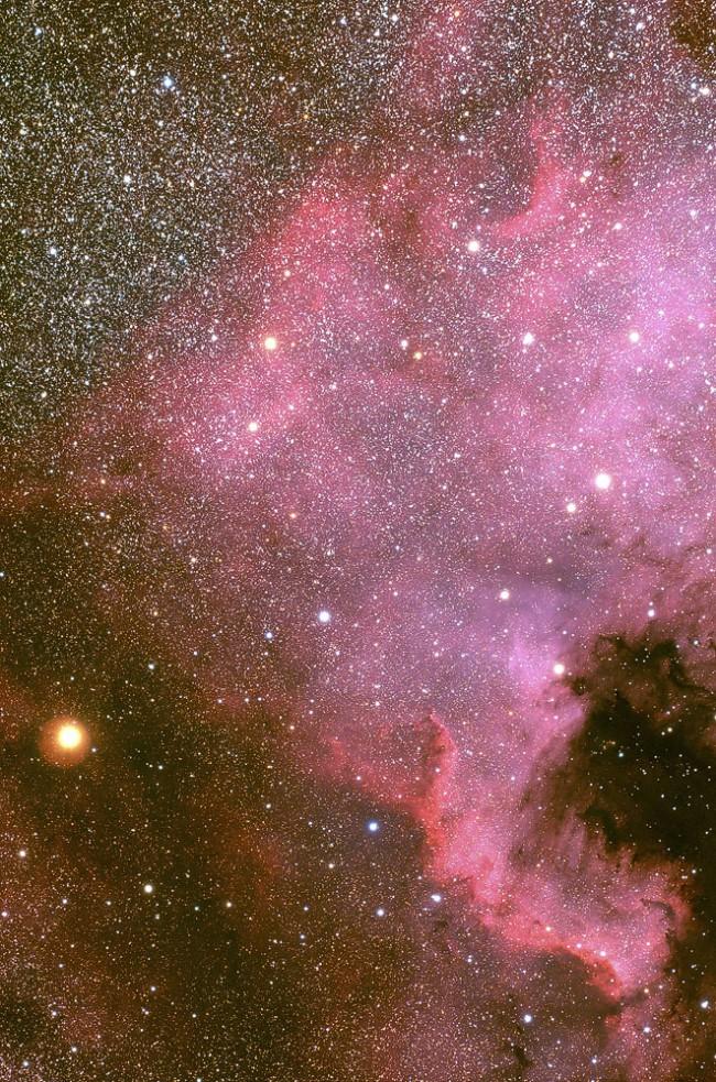 NGC 7000 - Amerique du Nord