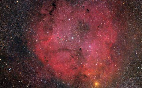 IC 1396 and the Elephant's Trunk Nebula