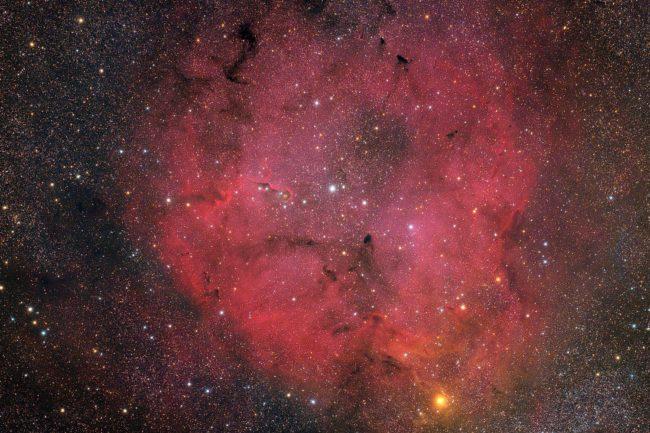 IC 1396 et La Nébuleuse de la Trompe d'Elephant